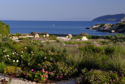 Coastal Garden in Greece