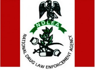 NDLEA seizes narcotic drugs valued N3.7bn in 2015