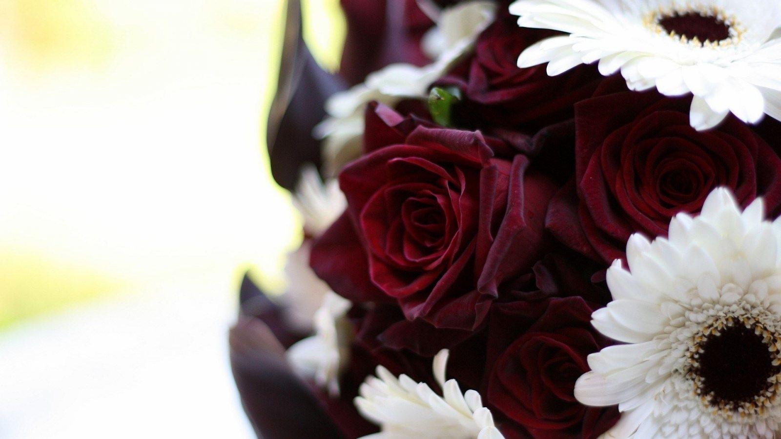 http://3.bp.blogspot.com/-m1_ph5cBlK4/UGFydDDrLFI/AAAAAAAAG80/E2LWfd2OGm0/s1600/roses--gerberas-bouquet-1600x900.jpg