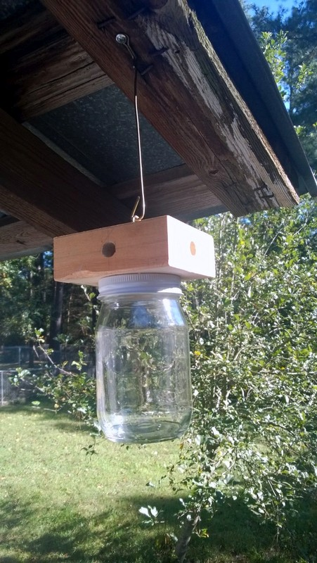 how to stop carpenter bees from boring into wood