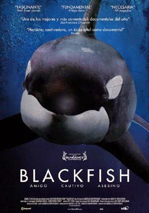 Cá Mập Đen - Blackfish (2013) Vietsub