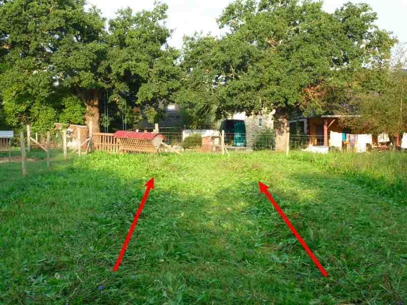 Permaculture in brittany learning to scythe with simon for Permaculture bretagne