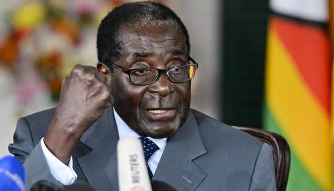 Mugabe slams Europe 'homosexual nonsense'