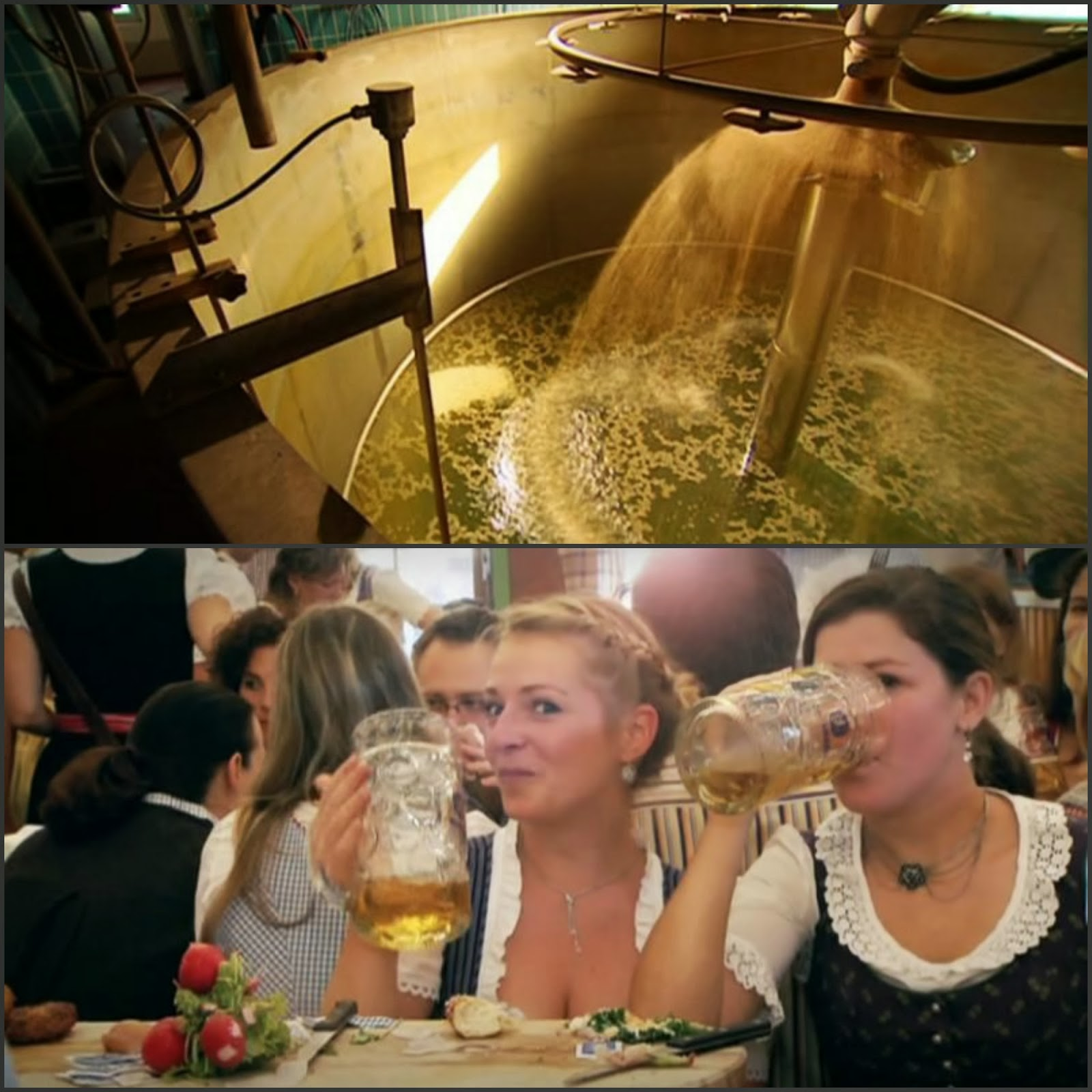 Stills; How Beer Saved the World