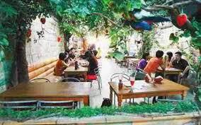 Cafe Murah Enak Buat Nongkrong di Jakarta
