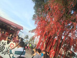Wishing Tree | Pantai Redang, Sekinchan