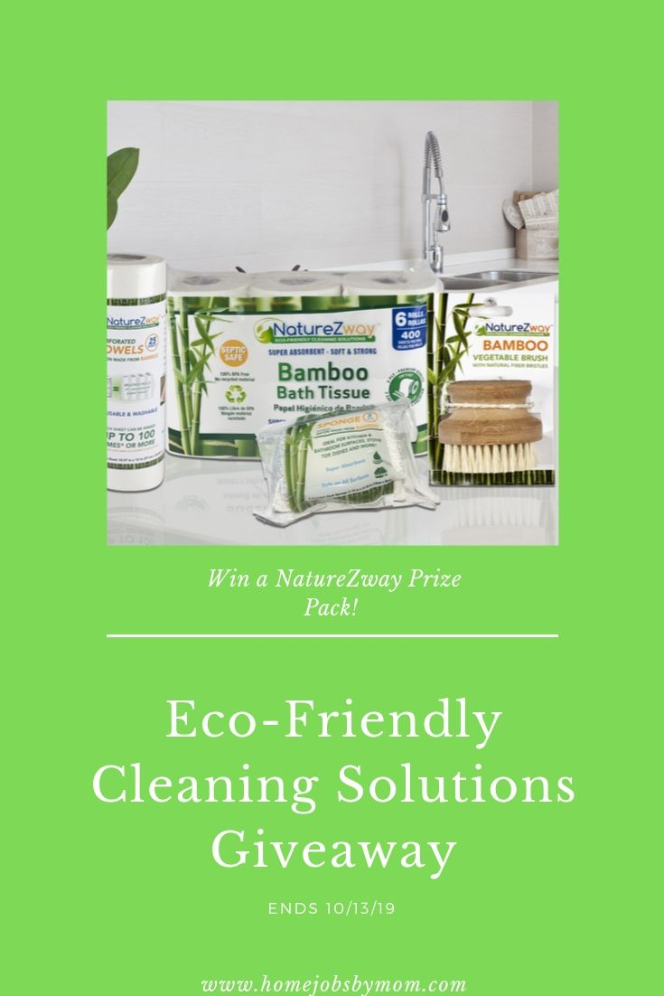 Eco-Friendly Cleaning Solutions Giveaway