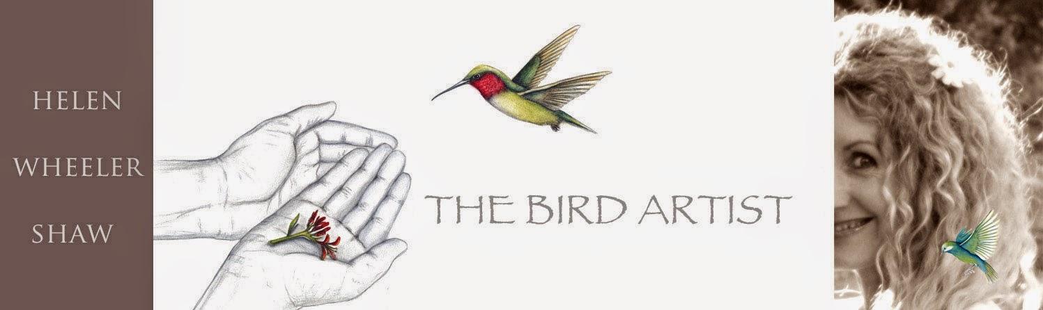 The Bird Artist - HELEN WHEELER-SHAW