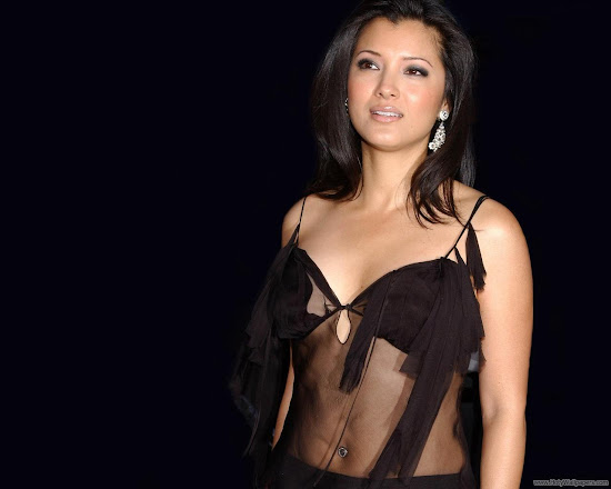 Kelly Hu Pretty Actress Wallpaper