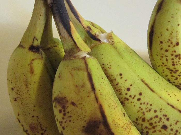 Smooshy Mushy Banana Split : Reduce, Craft, Recycle, Repeat: Recipe: Fried Banana Bites
