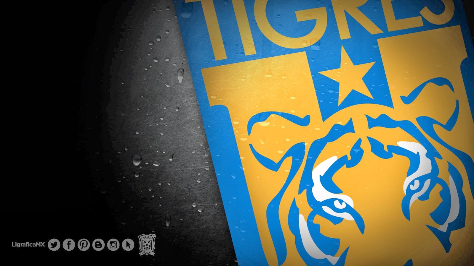 ligabancomermx 130314 5 Tigres.