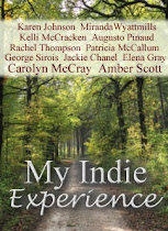 My Indie Experience Anthology