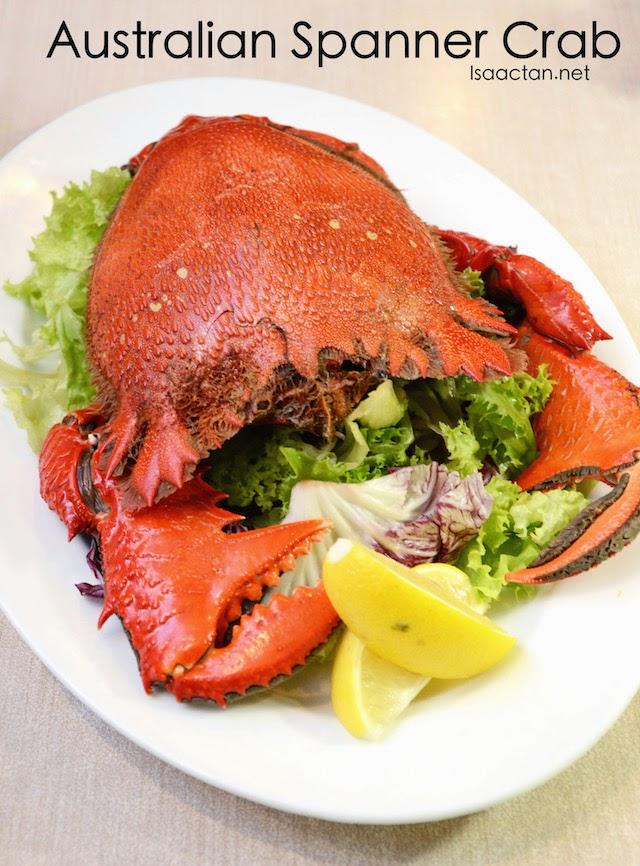 Australian Spanner Crab - RM59.90 for 800gm, RM79.90 for 1KG, RM99.90 for 1.3KG