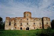 Castelul de la Mediesul Aurit