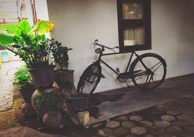 Tigalima Homestay - Retro bicycle