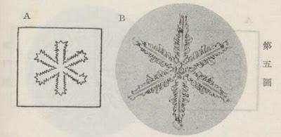 『雪華図説』の研究 模写図と顕微鏡写真と比較 第五図
