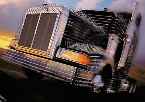 fotos de camiones fantasticos y de miedo 6