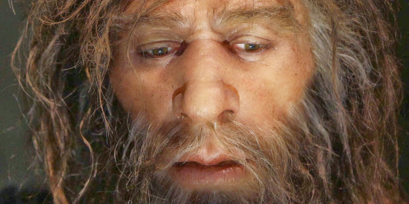 a history of the neanderthal species and the cause of extinction Some theories suggest neanderthals disappeared about 30,000 years ago because the species wasn't able to adapt to a cooling world as well as homo sapiens (see a prehistoric time line ) barton tells a different tale, suggesting that neanderthals reacted to the onset of the ice age the same ways modern humans did, by ranging farther for food and other resources.