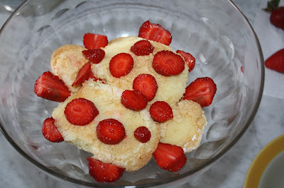tiramisu alle fragole ricetta