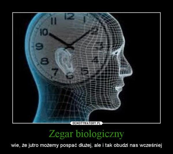 Żyj w zgodzie ze swoim zegarem biologicznym.