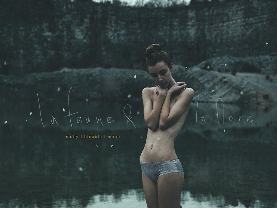 ©Mark Harless (Bleeblu) & Moon | La faune et la flore