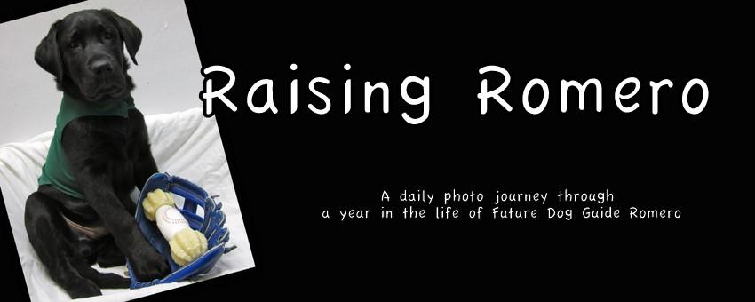 Raising Romero