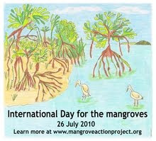 SAVE MANGROVES