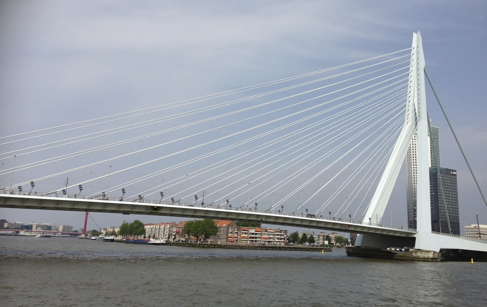 Erasmusbrug (bridge) in Rotterdam