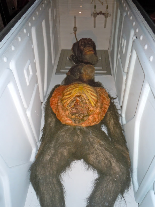 28 Days Later chimp movie props