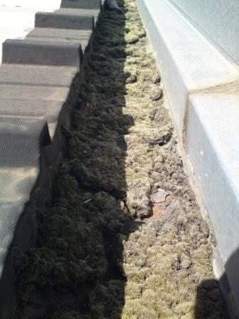 Si tiene que limpiar su canal n y hacer un mantenimiento for Tejados prefabricados