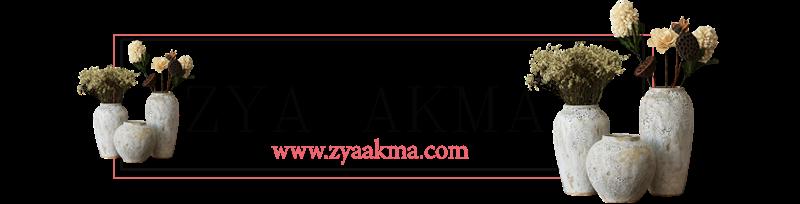 ZYA AKMA