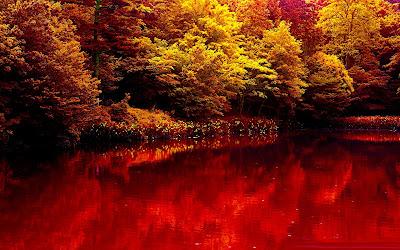 Tổng hợp hình nền thiên nhiên đẹp cho máy tính full HD 29