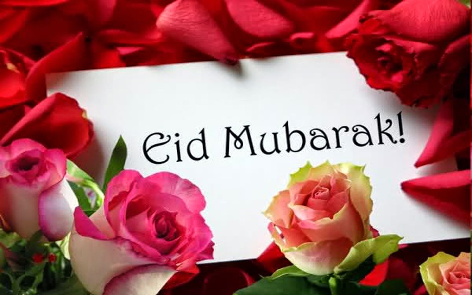 Eid Wishes With Flowers Wall Paper Entertainment Magazine