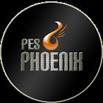 Patch Phoenix 2012