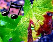 Music New Wine Spirit