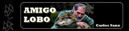 http://carlossanzamigolobo.com/