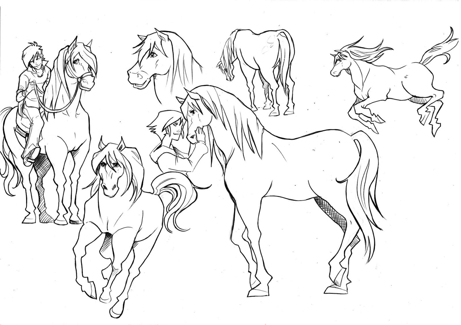 Cavalli Disegni Da Colorare E Stampare