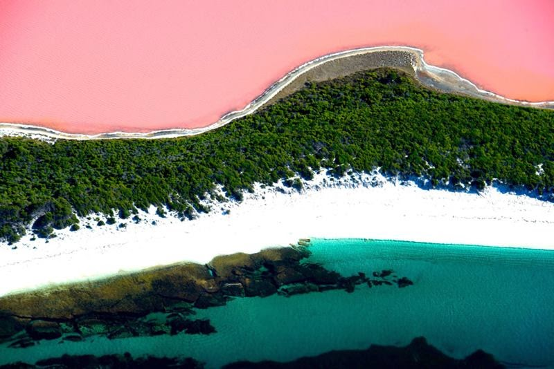 Pink Hillier Lake of Middle island, Australia