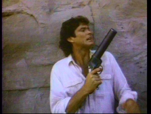 Hoffmeister's gun