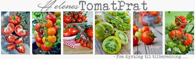 http://tomatprat.blogspot.no/