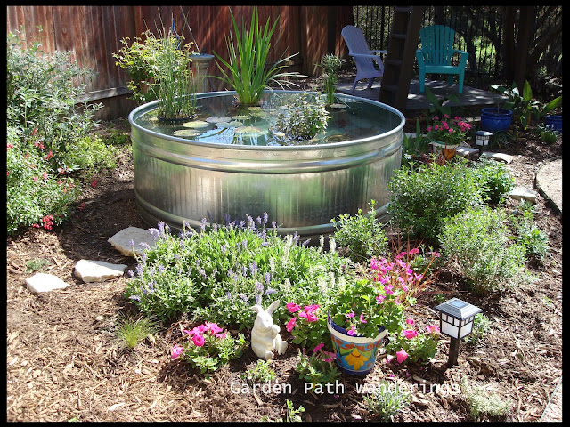 Water Garden Garden Path Wanderings Stock Tank Water Garden Is In