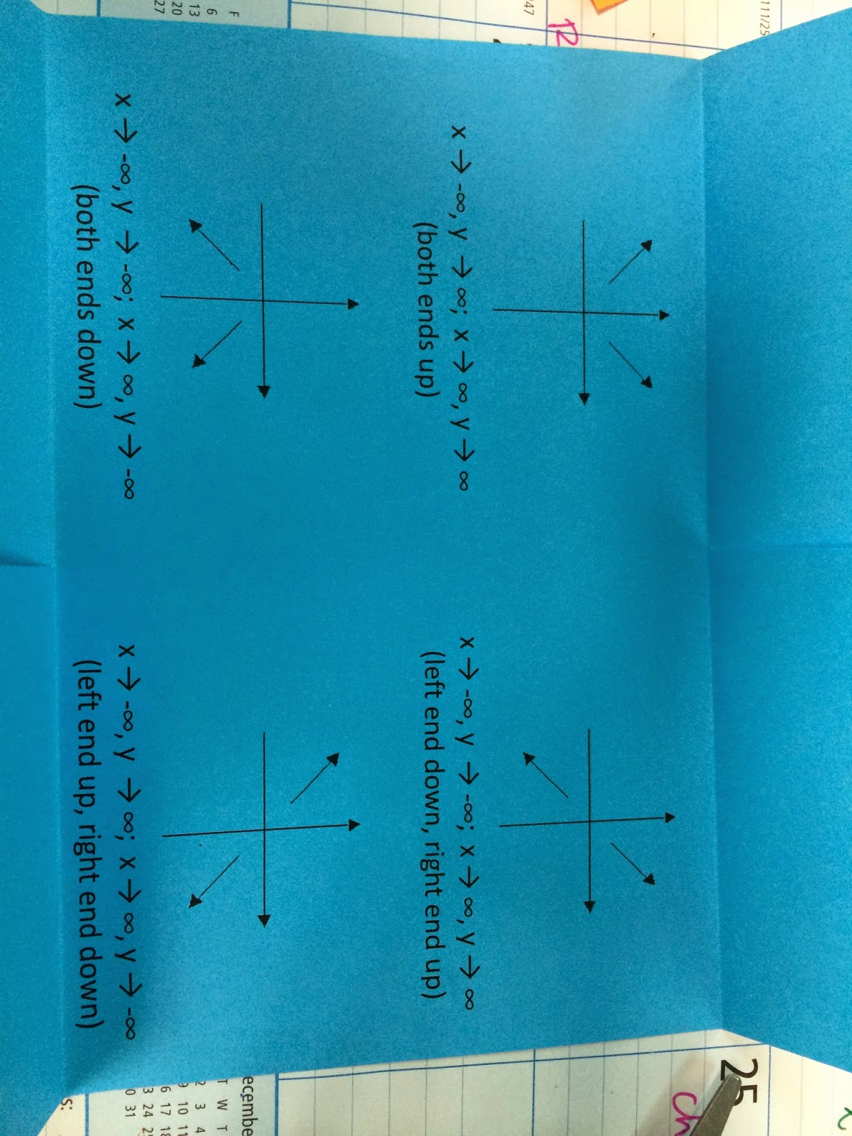 The Agony And Dxdt Polynomials And Rational Functions