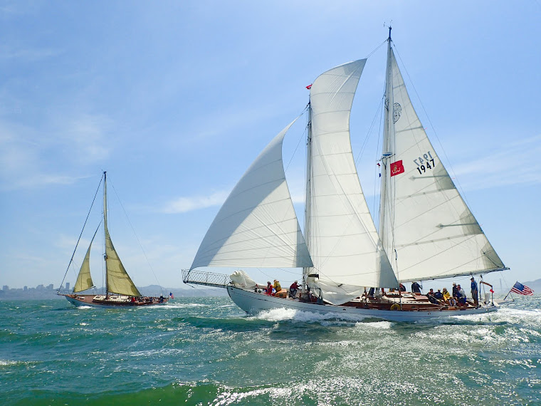 MAYAN - The chronicles of our schooner