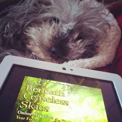 A white Kobo displays the top of the green-tinged cover for The Best of Beneath Ceaseless Skies, Year Four. Murchie's head rests in the space immediately behind it.