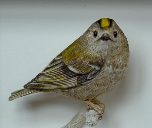 06-Goldcrest-Johan-Scherft-Living-Paper-Birds-Sculptures-Watercolours-www-designstack-co