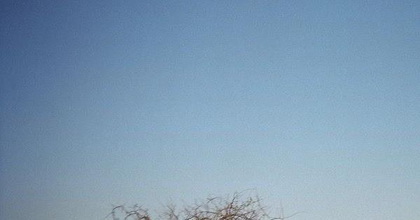 SerTÃO Des-ENCANTADO: Cordel Sobre a Seca