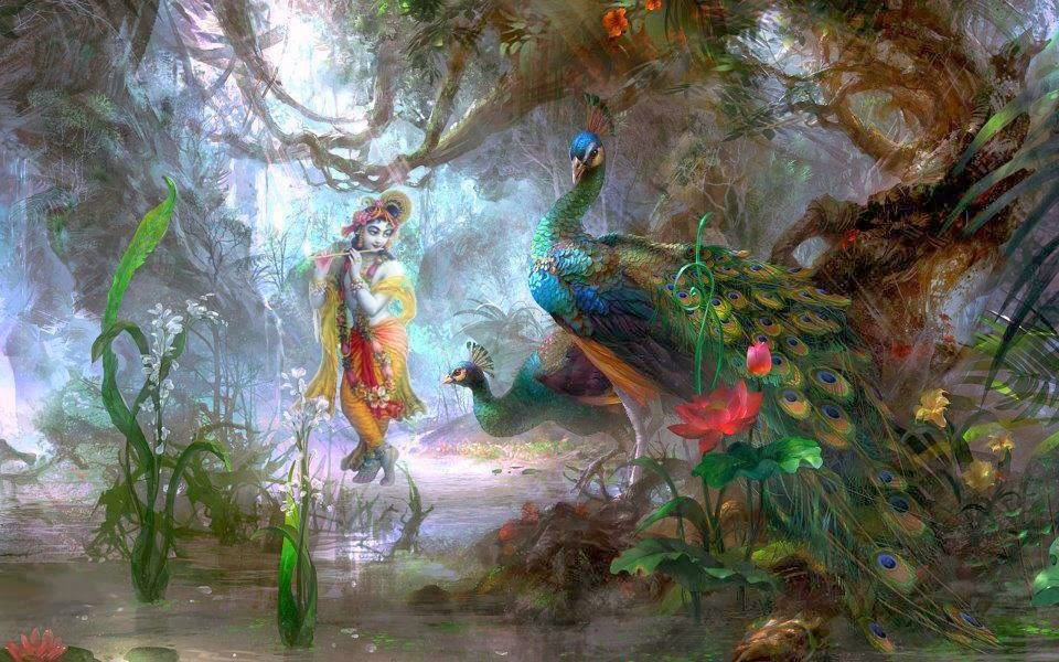 Best Lord Krishna with Peacock Feather HD wallpapers for free download