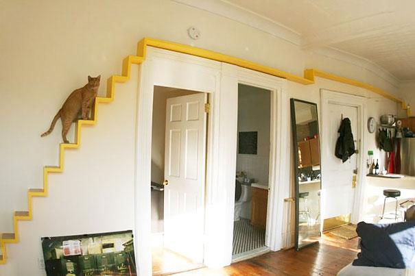 Como deixar sua casa mais confortavel e divertida para seus gatos: escada para gatos