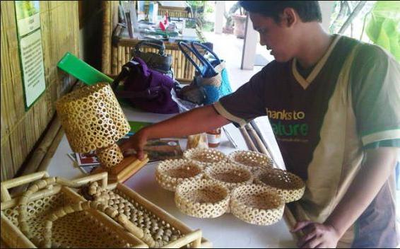 usaha bahan baku bonggol jagung