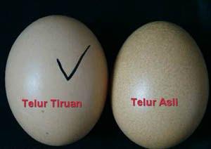Beware of Telur Palsu